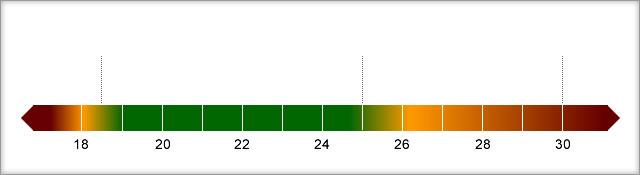 BMI Range