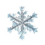 Picture of snowflake for chilled PediaSure Complete®