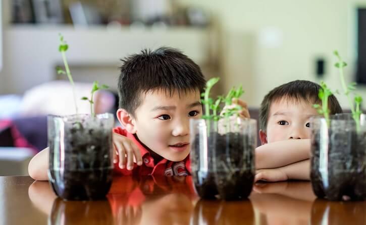 Childs_growth_1.jpg