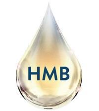 ensure HMB
