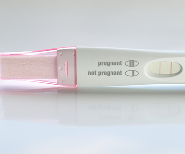 A pregnancy test kit