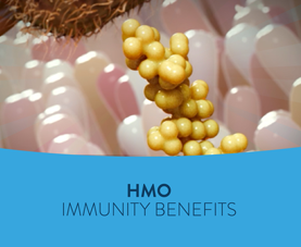 A slide introduces an animated short called HMO Immunity Benefits.