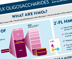 A preview of ANHI's infographic on human milk oligosaccharides