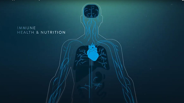 "A still frame from the video ""How Nutrition Supports the Immune System""."