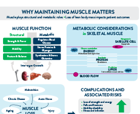 An infographic on why maintaining muscle matters