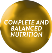Ensure Gold with Complete and Balanced Nutrition_1