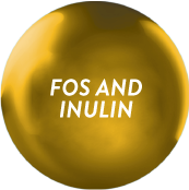 Ensure Gold with FOS and Inulin_1