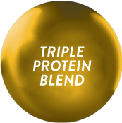 Ensure Gold with Triple Protein Blend_1