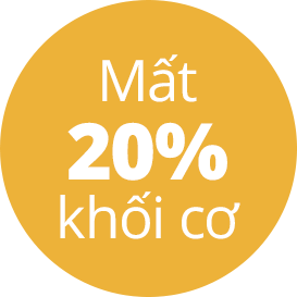 mat 20% khoi co