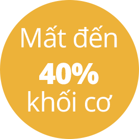mat 40% khoi co