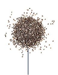 This Glucerna® heart healthy meal plan includes black chia seeds
