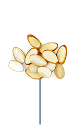 This Glucerna® high protein meal plan includes sliced almonds