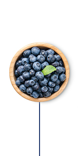 This Glucerna® vegetarian meal plan includes blueberries