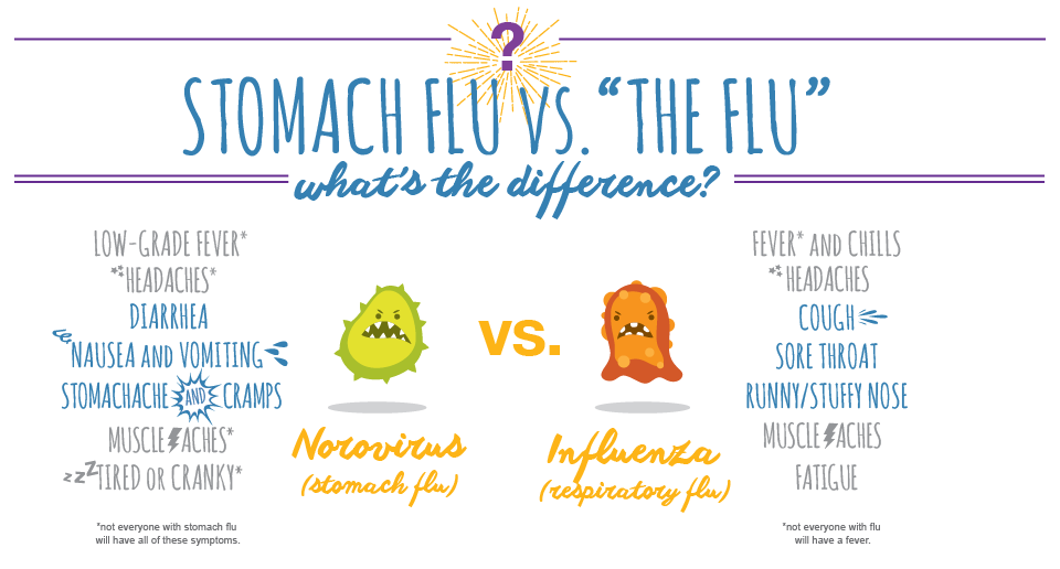 Stomach Flu (Norovirus) vs The Flu (Influenza)