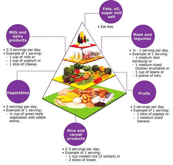 Atkins Diet Food Delivery