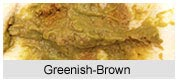 Greenish Brown
