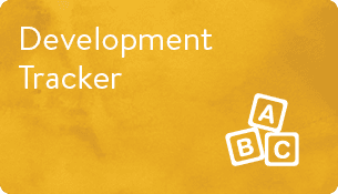 Development Tracker PDF
