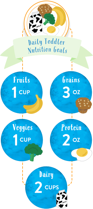 Infographic on daily nutrition food goals for 1-2 year-old kids