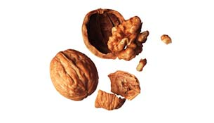 Two walnuts on a white background with one cracked open