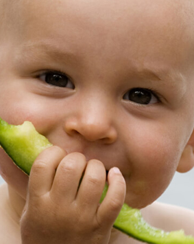 banner-child-eating-melon-sweden - Copy