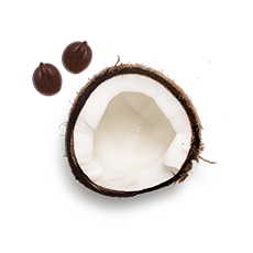 keto-right-side-coconut-image_tcm1506-125676.png